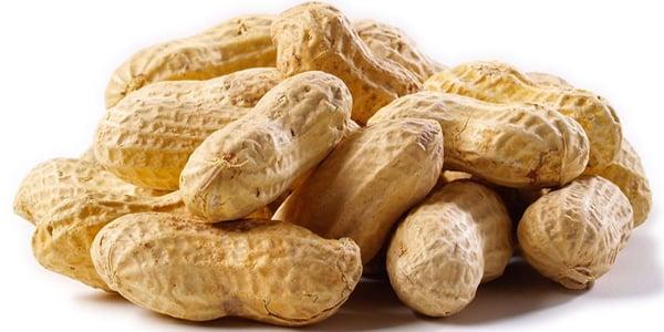 'Breakthrough' peanut-allergy drug ready for FDA