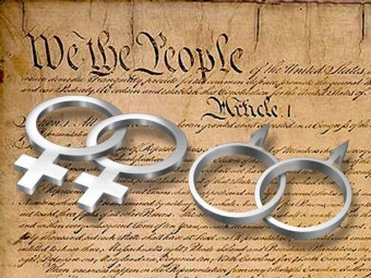 same-sex-constitution
