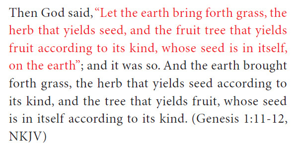 an excerpt from the divine secret shows how gods personal remarks are always highlighted in red letters even in the old testament