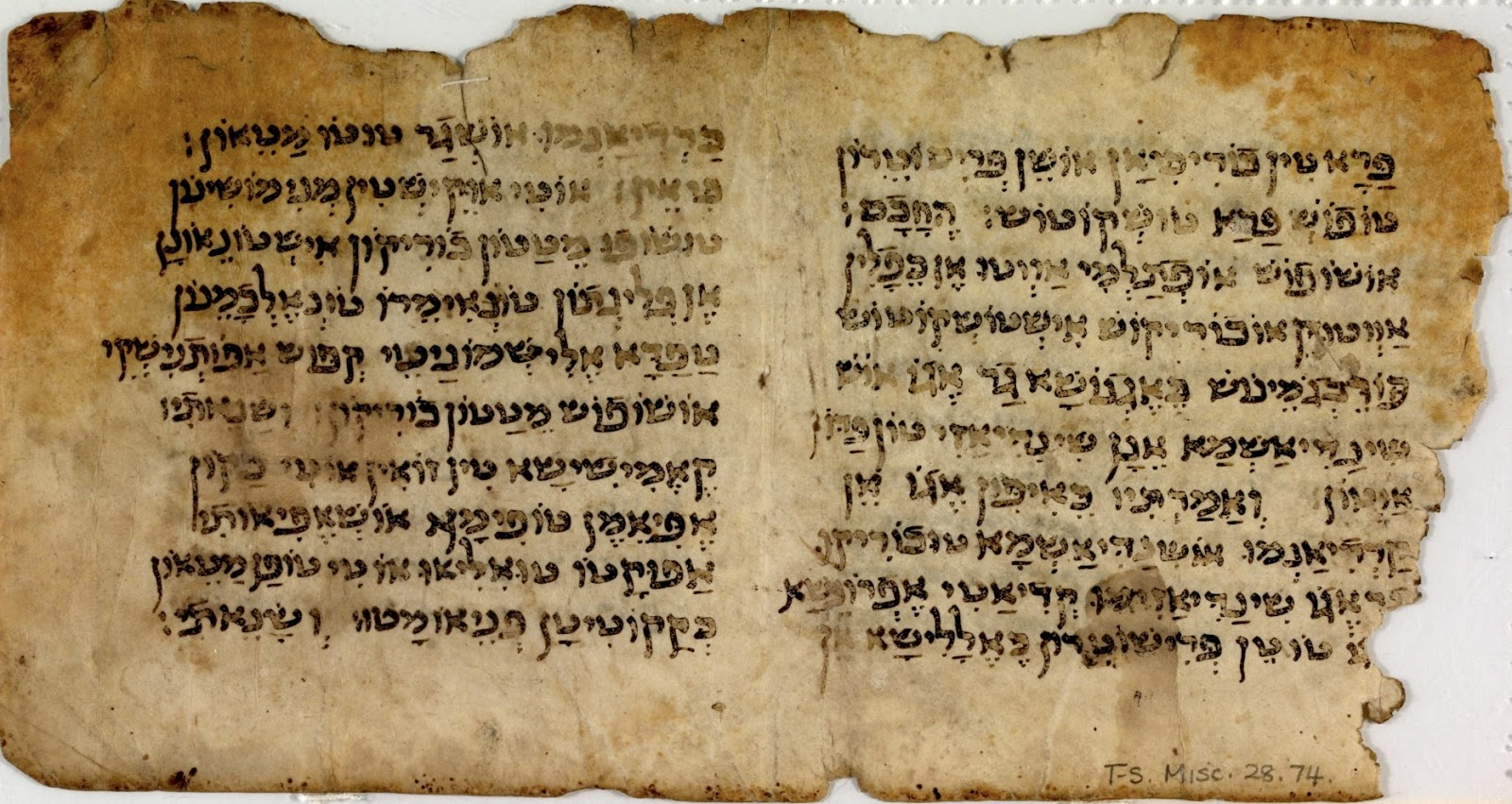 fragment of an hebrew handwritten letter it was new biblical discovery after 2 000 years 971