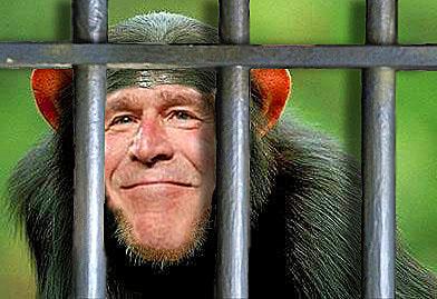 george-w-bush-monkey-photo.jpg