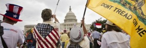 IRS_Tea_Party_0784d