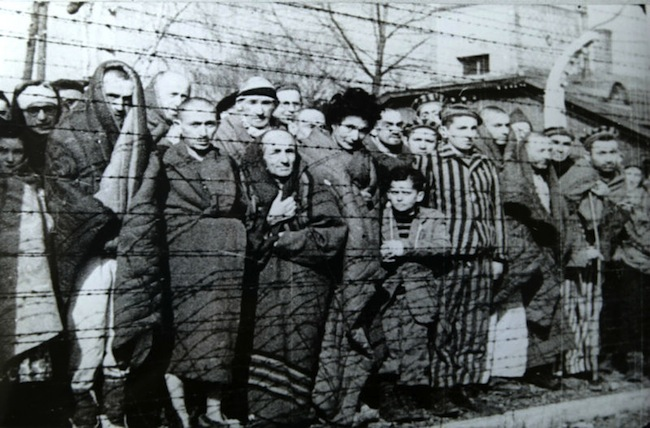 Mike Huckabee: In 2020, Holocaust Remembrance Day is as important as ever - WND