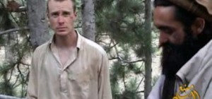 bergdahl - this one