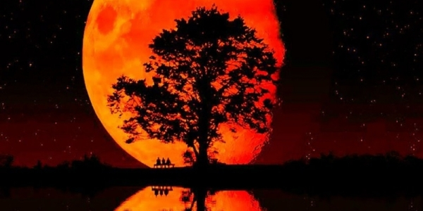 'Blood Moons' revelations rock TV audience