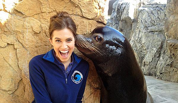 Leão-marinho-beijando-mulher-600