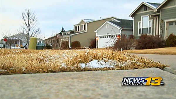Pauline Hawkins' home in Colorado Springs is now inhabited by squatters.