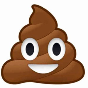 http://www.wnd.com/files/2015/03/poop-emoji-emoticon-600-300x300.jpg
