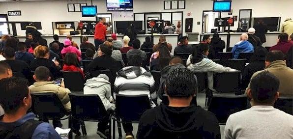 Illegals overwhelm DMV with license demands