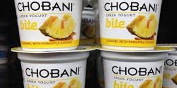 Chobani has been hailed as the fastest growing brand of Greek-style yogurt and recently opened the world's largest yogurt plant in Idaho.