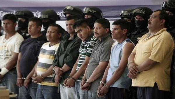 cartel_arrest