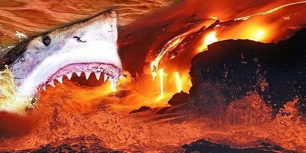 Heat Proof Sharks Living Inside Scalding Hot Volcano Wnd