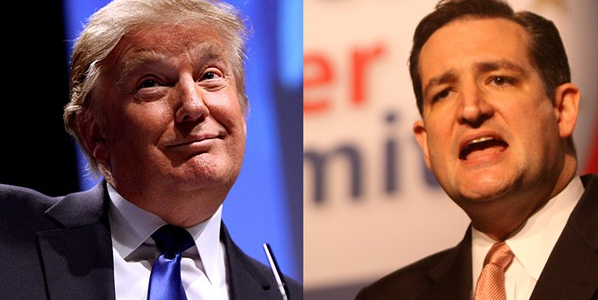 Donald Trump and Tex Cruz have been battling it out for the Republican nomination for president.