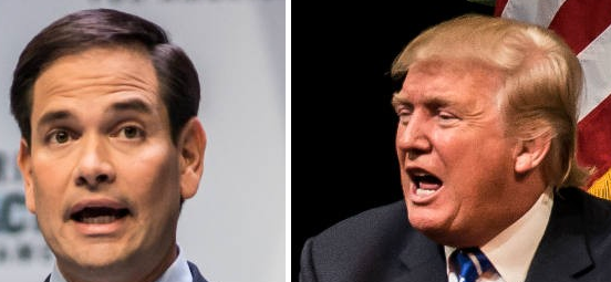 Sen. Marco Rubio and Donald Trump