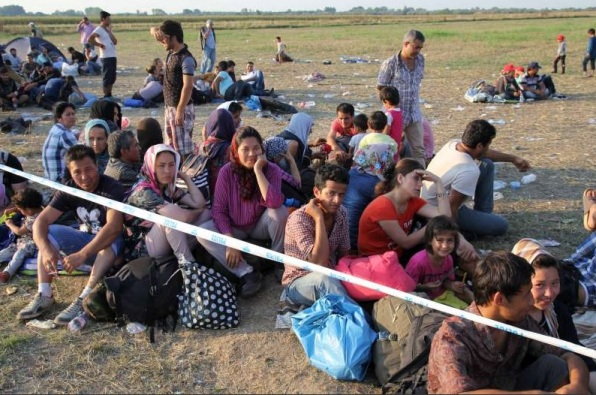 Syrian refugees near the Hungarian-Serbian border waiting to be transported to a registration center (UNHCR)
