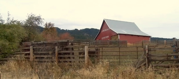 The family ranch of the late Jack Yantis in Council, Idaho (Photo: Fox News screenshot)