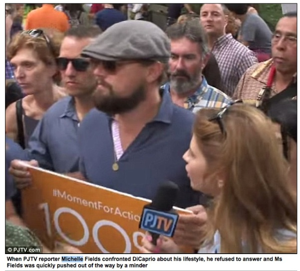 MICHELLE FIELDS daily mail PHOTO AND DAILY MAIL CAPTION on DICAPRIO INTERVIEW