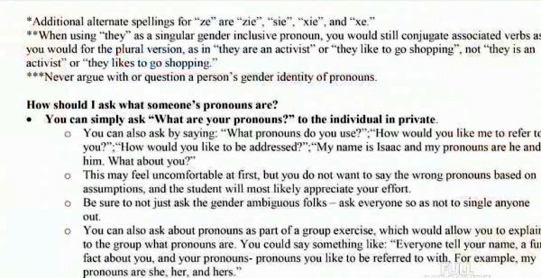 American University's pronoun guide