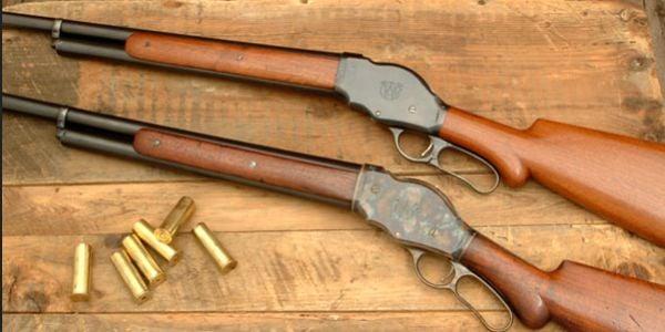 State gun plan blasted for having 'no public saf...