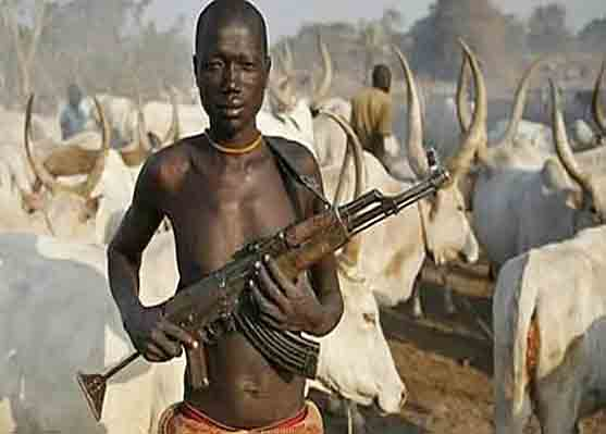 Fulani Muslim herdsman have been attacking Christian villages in northern Nigeria.