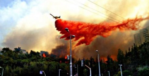 Wildfires plagued Israel for a fourth day Friday. (Twitter/@luis_chamizas)