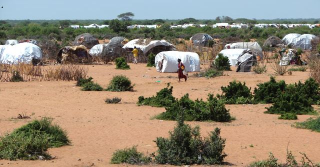 The U.N.'s massive Dadaab camp in Kenya sends a steady stream of Somali refugees to the United States. More than 200 Somalis have entered the U.S. as refugees since Trump's first full day in office on Jan. 21.