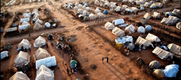Most Somali refugees start out here, at the United Nations Daadab refugee camp on the Kenya-Somalia border. Between 5.000 and 11,000 per year are sent to the United States.