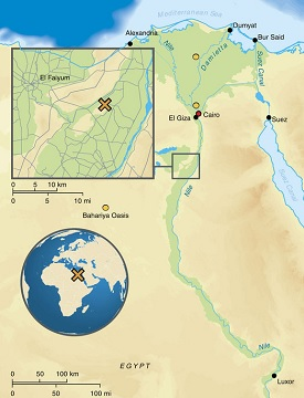 Abusir el-Meleq archaeological site