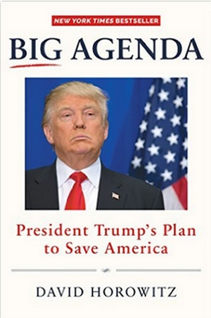 Big Agenda book cover 300 wide