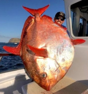 Shawn Stewart with his opah
