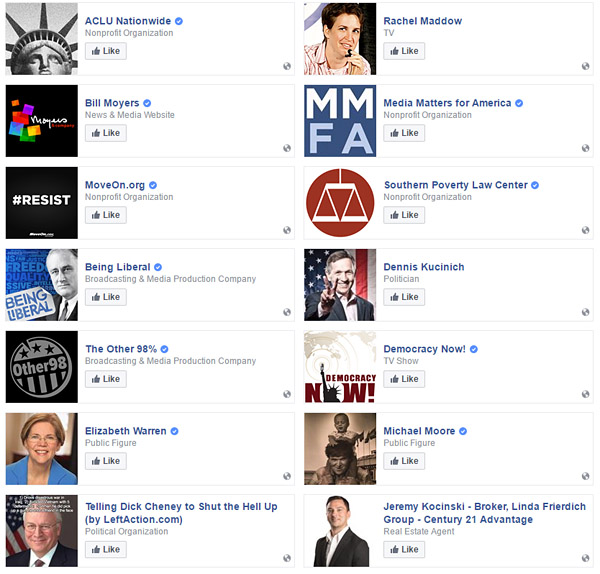James T. Hodgkinson 'liked' the Southern Poverty Law Center, MoveOn.org, Media Matters, the ACLU, Rachel Maddow and other leftist figures and organizations on his Facebook page (Screenshot: Facebook)