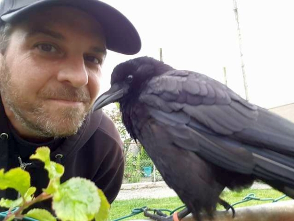 Canuck the Crow and Shawn Bergman, his caretaker pal –not your typical pet/owner relationship