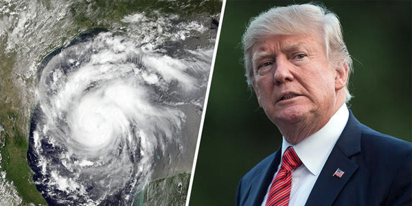 Trump-hurricane-screenshot