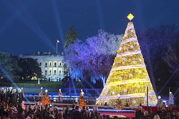 President Donald J. Trump and First Lady Melania Trump participate in the 2017 National Christmas Tree Lighting, Nov. 30, 2017 (Official White House photo)