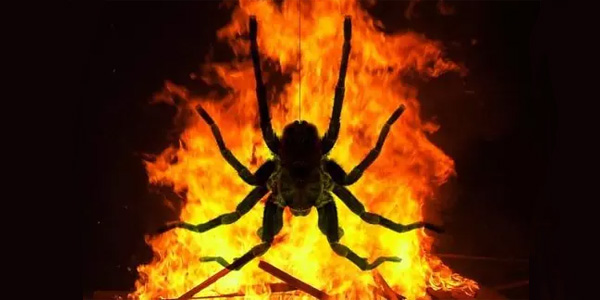 Man Trying To Kill Spider 'Sets Apartment On Fire'