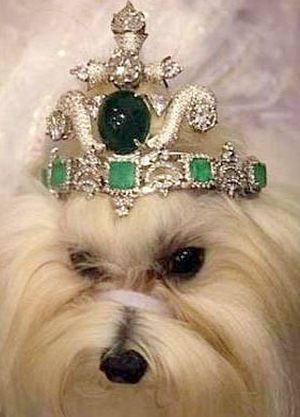 Dog tiara – $4.2 million