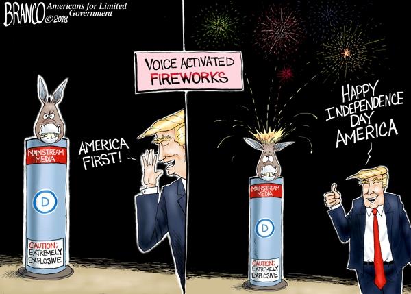 Lib-Fireworks-DT-600.jpg