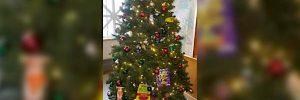 racist-christmas-tree-tw-600