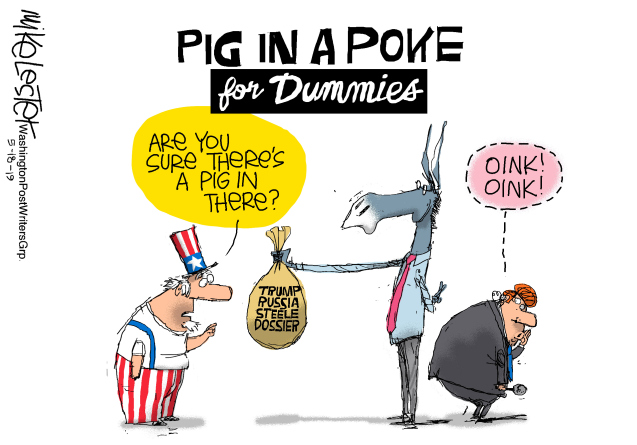 Pig in a poke for dummies