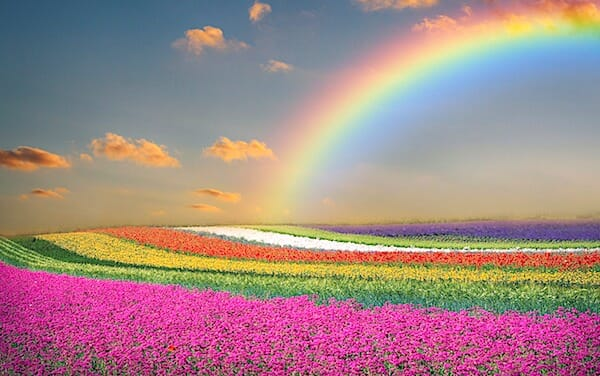 [rainbow-spring-colors-colorful-flowers-life-God-Christians-christianity-seasons-pixabay]