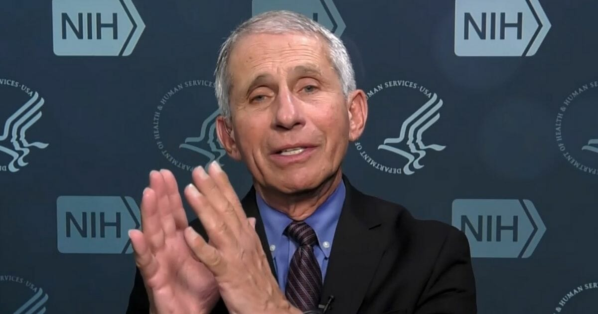 Fauci blames America's 'independent spirit' for rise in COVID cases