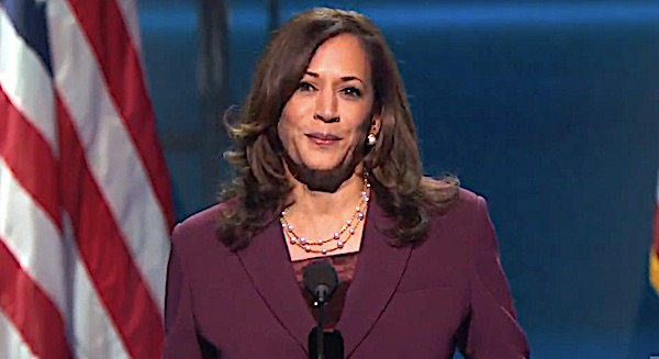 Bail fund promoted by Kamala Harris helped free serial domestic abusers