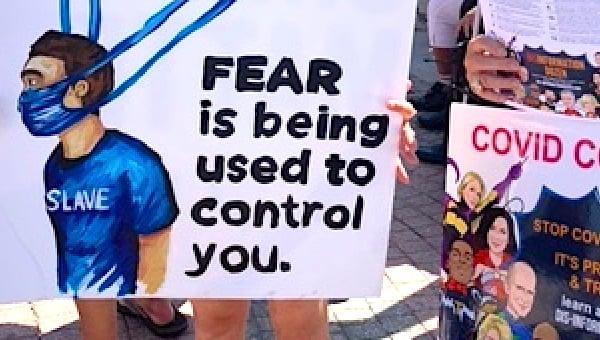 million-maskless-march-fear-control-slave-covid-coronavirus-nadine-nixon-jpg.jpg